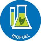 Renewable Energy Sources Biofuels