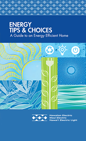Download Our Energy Tips & Choices PDF