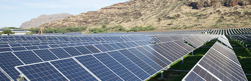 Regulators approve community solar plans