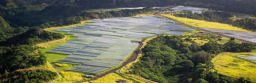 Hawaiian Electric marks Earth Day with Sustainability Report