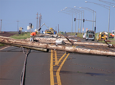 Downed Power Line Safety Hawaiian Electric