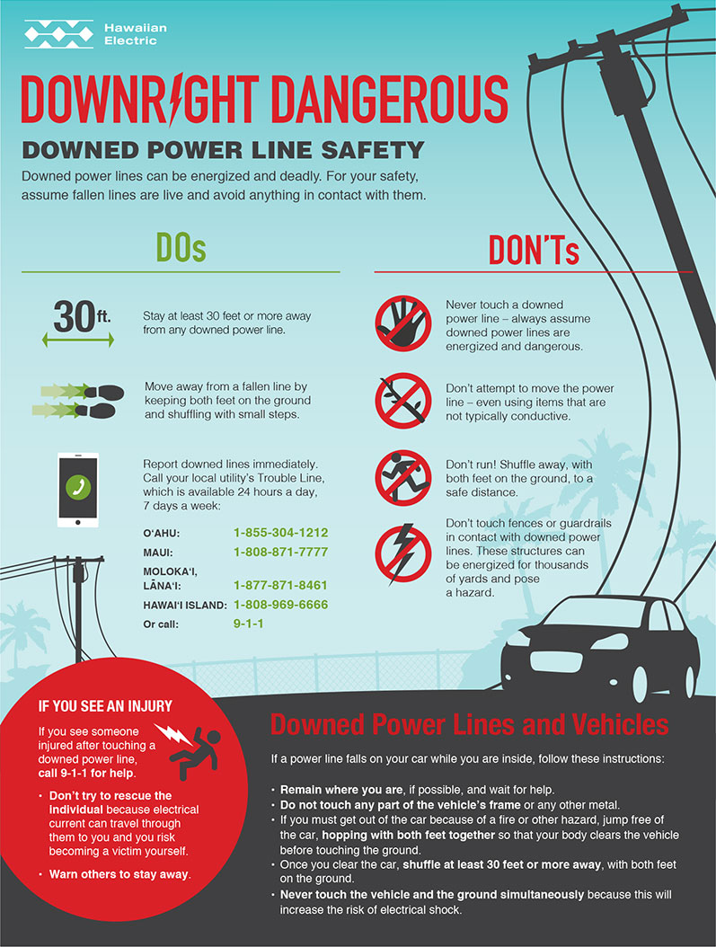 Downed Power Line Safety Infographic