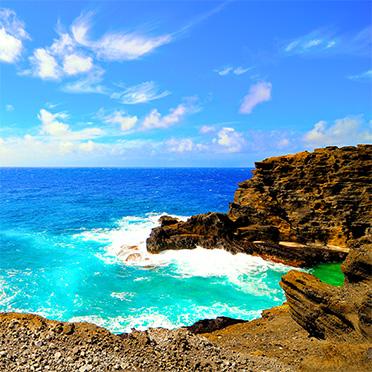 Home | Hawaiian Electric